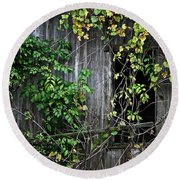 Barn Window Vine Round Beach Towel