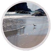 Round Beach Towel featuring the photograph Beachcomber by Sharon Elliott