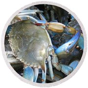Beaufort Blue Crabs Round Beach Towel by Patricia Greer