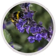 Round Beach Towel featuring the photograph Bee by David Gleeson