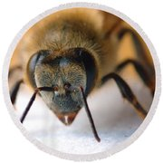 Bee In Macro 4 Round Beach Towel
