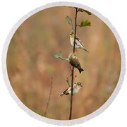 Bird Stack Round Beach Towel