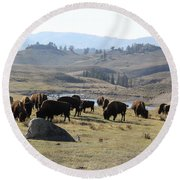 Bison Land Yellowstone National Park Round Beach Towel by Brad Scott