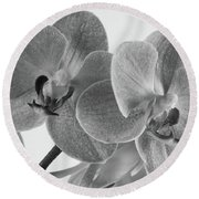 Black And White Orchid Round Beach Towel