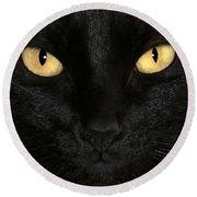 Black Cat Halloween Card Round Beach Towel