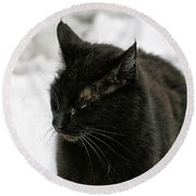 Black Cat White Snow Round Beach Towel