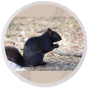 Black Squirrel Of Central Park Round Beach Towel