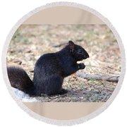 Black Squirrel Of Central Park Round Beach Towel by Sarah McKoy