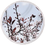 Blossoms In Time Round Beach Towel