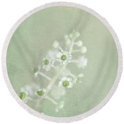 Blossoms Unfolding Round Beach Towel