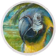 Blue And Gold Macaw By The Sea Round Beach Towel