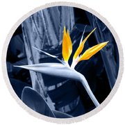 Blue Bird Of Paradise Round Beach Towel