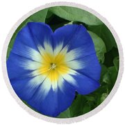 Round Beach Towel featuring the photograph Blue Burst by Bonfire Photography