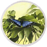 Blue Butterfly Of Branson Round Beach Towel