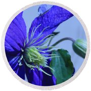 Blue Flower Round Beach Towel