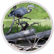 Blue Heron At The Lake Round Beach Towel