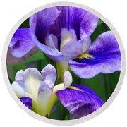 Blue Irises Round Beach Towel
