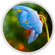 Blue Poppy Dreams Round Beach Towel by Byron Varvarigos