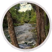 Round Beach Towel featuring the photograph Blue Spring Branch by Marty Koch