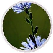 Blue Wildflower Round Beach Towel