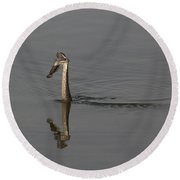 Round Beach Towel featuring the photograph Breakfast by Eunice Gibb