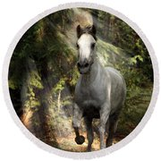Breaking Dawn Gallop Round Beach Towel by Wes and Dotty Weber
