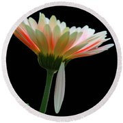 Broken Daisy Round Beach Towel
