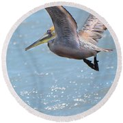 Brown Pelican Round Beach Towel by Betty LaRue