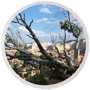 Bryce Canyon Round Beach Towel by Dany Lison
