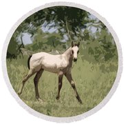 Buckskin Pony Round Beach Towel