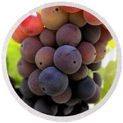 Bunch Of Ripening Grapes Round Beach Towel by Anne Mott