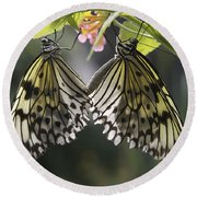 Butterfly Duo Round Beach Towel by Eunice Gibb