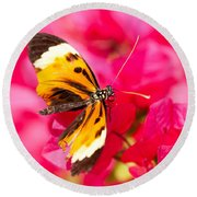 Round Beach Towel featuring the photograph Butterfly by Les Palenik