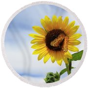 Butterfly On A Sunflower Round Beach Towel
