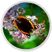Butterfly On Lilac Round Beach Towel