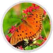 Round Beach Towel featuring the photograph Butterfly On Pentas by Carla Parris