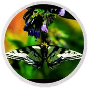 Round Beach Towel featuring the photograph Butterfly Upside Down On Comfrey Flowers by Susanne Still