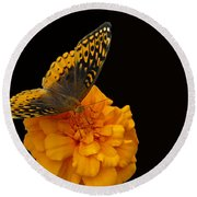 Butterfly Visitor Round Beach Towel