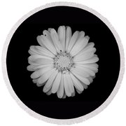 Round Beach Towel featuring the photograph Calendula Flower - Black And White by Laura Melis