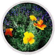 Round Beach Towel featuring the photograph California Poppy by Nina Prommer