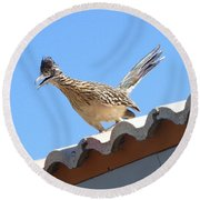 Round Beach Towel featuring the photograph California Roadrunner by Carla Parris