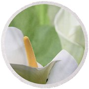 Calla Lilies Round Beach Towel by Alyce Taylor