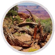 Canyonlands 2 Round Beach Towel by Dany Lison