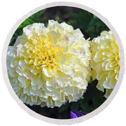 Round Beach Towel featuring the photograph Carnations by Tikvah's Hope