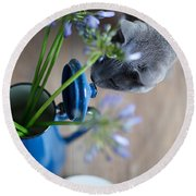 Cat And Flowers Round Beach Towel