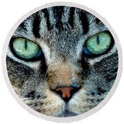 Cat Face Round Beach Towel