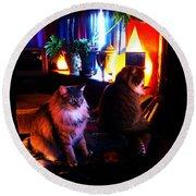 Cats On A Drum Round Beach Towel by Susanne Still