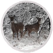 Round Beach Towel featuring the photograph Caught In The Snow Storm by Elizabeth Winter