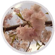 Round Beach Towel featuring the photograph Cherry Blossom 2 by Andrea Anderegg