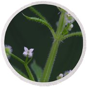 Round Beach Towel featuring the photograph Cleavers by Daniel Reed